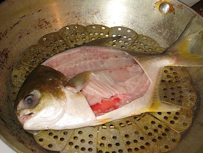 Рыба Инь Ян