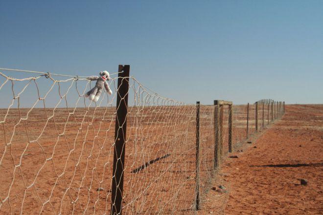 Забор в пустыне