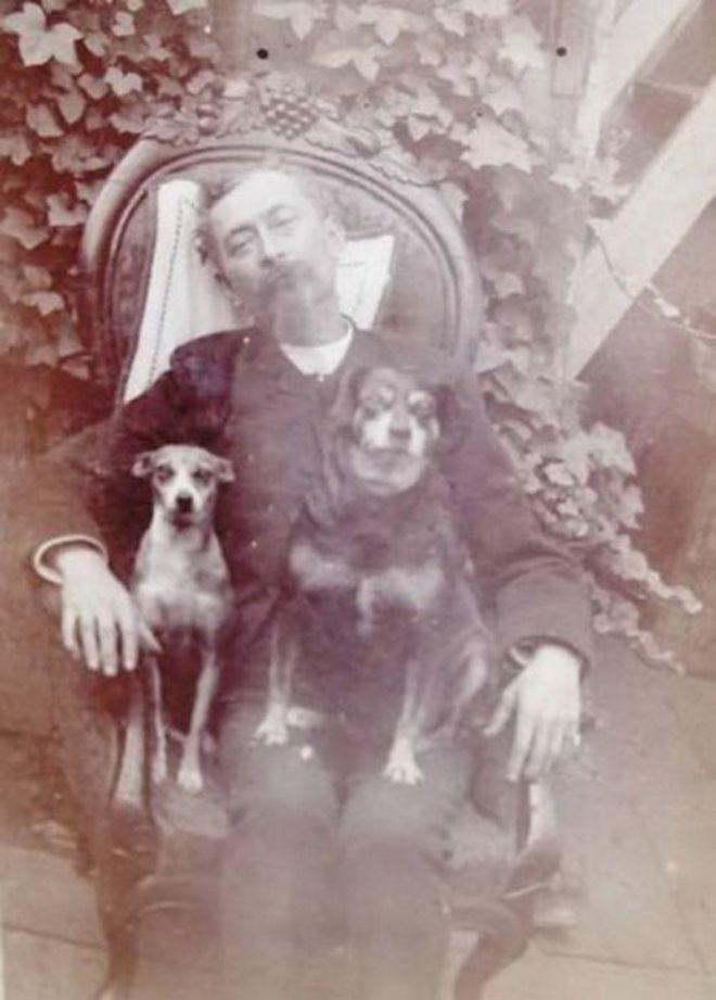 Любимые собаки рядом и никто не догадается, что хозяин уже давно в мире ином…