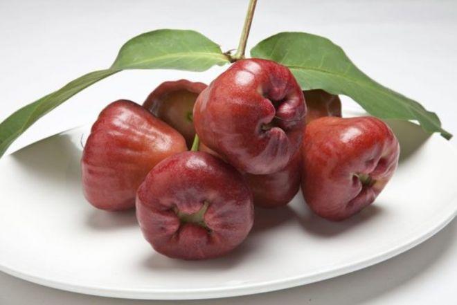 Восковые яблоки