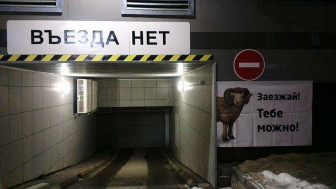 парковка для оленей