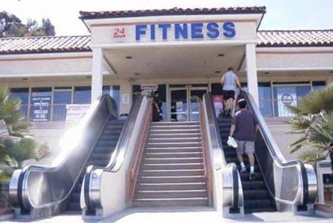 Эскалатор в фитнес-клуб