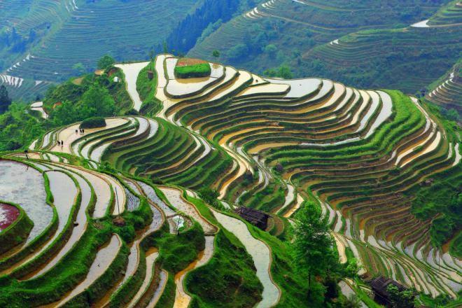 Террасные поля Лунцзы, Китай