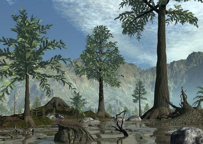 Выжившее доисторическое растение