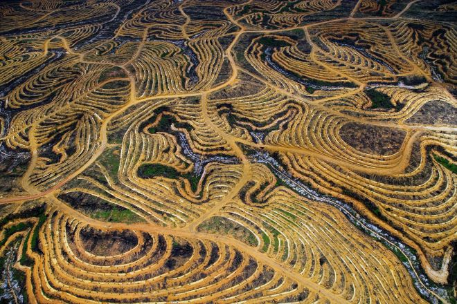 Борнео, Индонезия