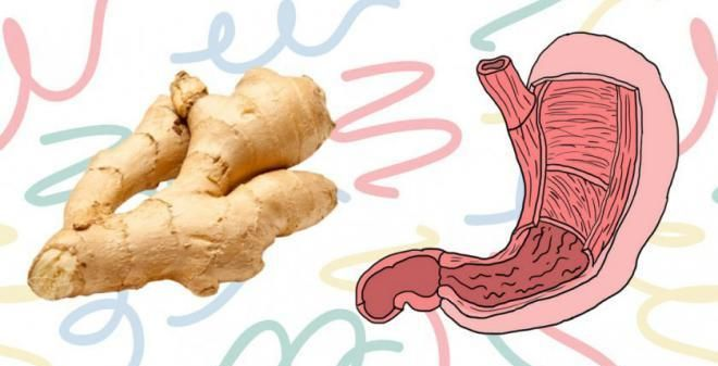 Имбирь и желудок