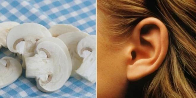 Грибы и ухо