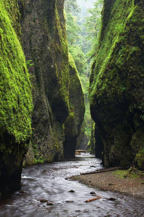 Ущелье Онеонты, Орегон 2