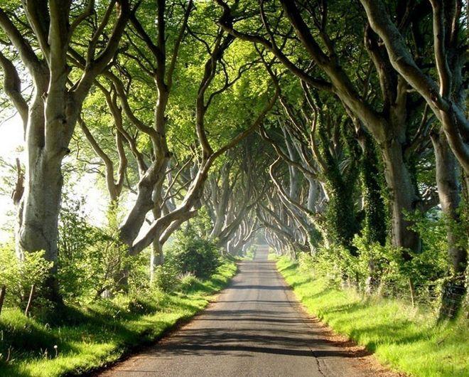 темная аллея в ирландии