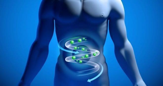 Газы из кишечника плохо пахнут из-за микроорганизмов