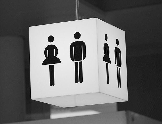 особенности общественных туалетов