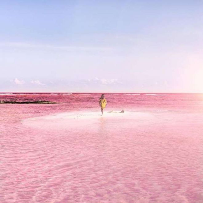 Розовая лагуна2