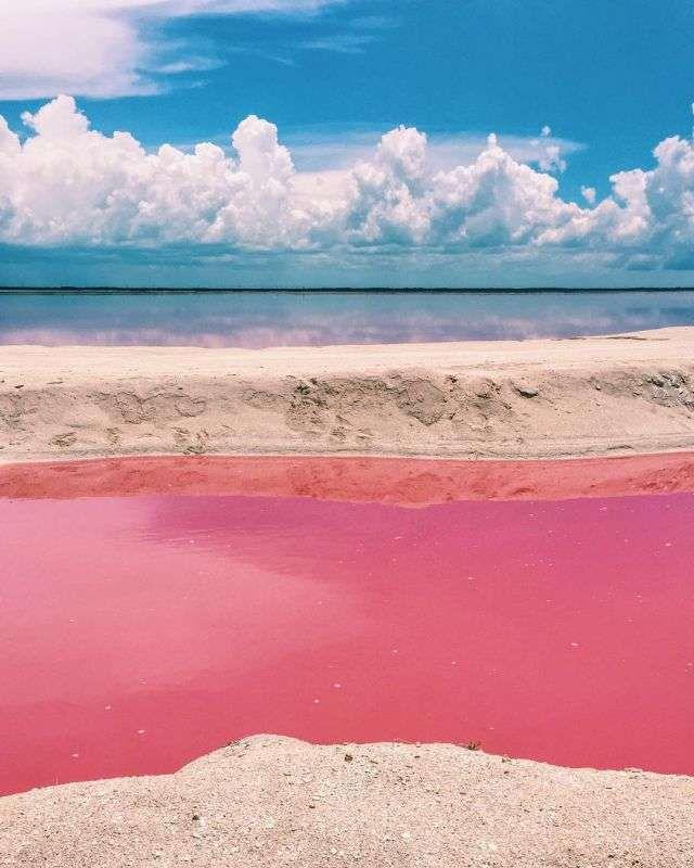 Розовая лагуна9