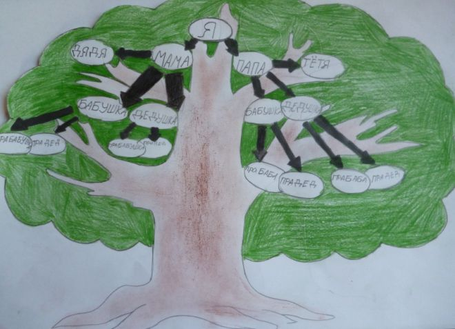 Как нарисовать семейное дерево ребенку в школу? Как Нарисовать Семейное Дерево