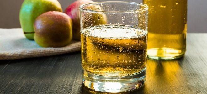 Рецепт сидра из яблок в домашних условиях