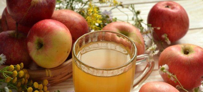 Сидр из отжатого яблочного сока