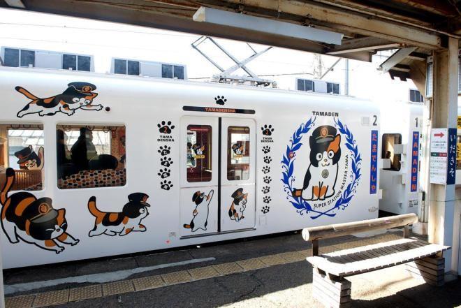 Поезд с изображением Тамы