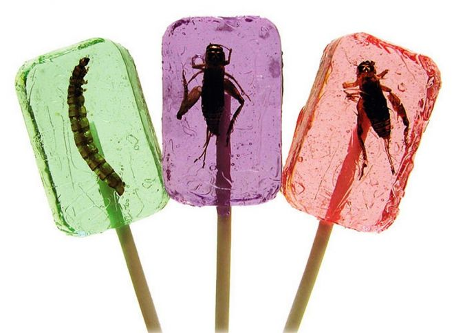 Hotlix Insect Candy
