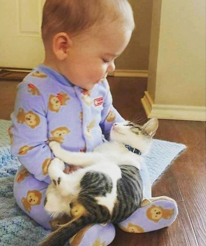 Смешные картинки про детей и котят, картинки