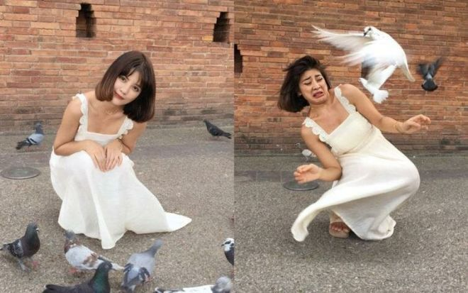 1. Когда так хочется сфотографироваться с милыми голубями