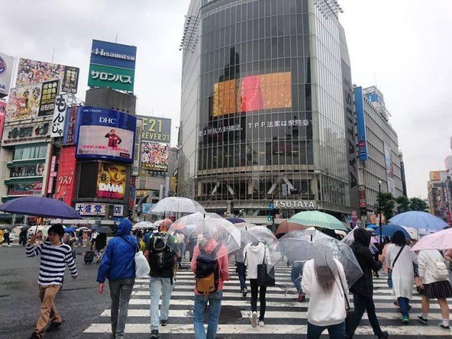 В Токио есть удивительная услуга – можно взять бесплатный прозрачный зонт
