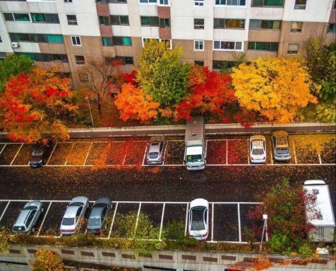 Многие люди очень любят осень за ее многогранность
