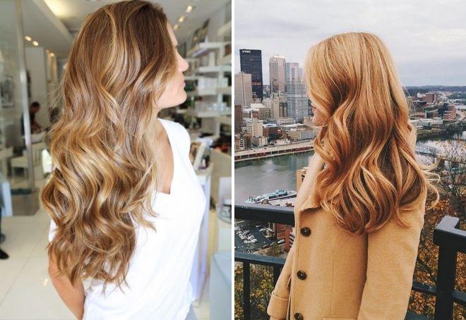какой цвет волос медовый