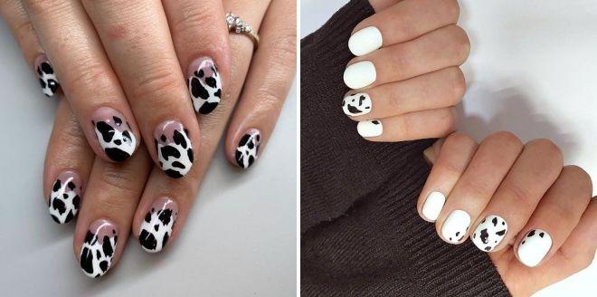 маникюр корова на короткие ногти
