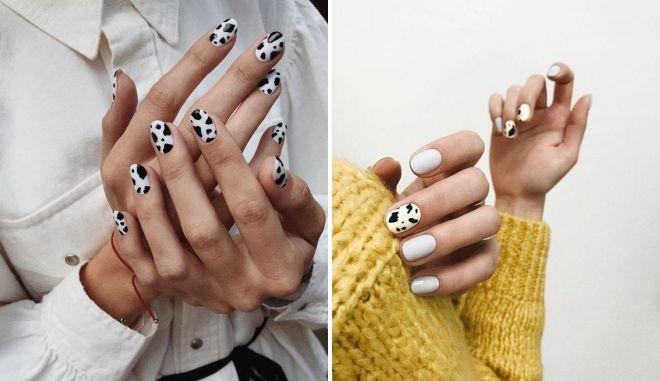 нейл-арт корова на короткие ногти