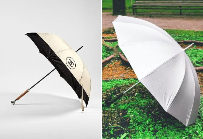 canne parapluie femelle