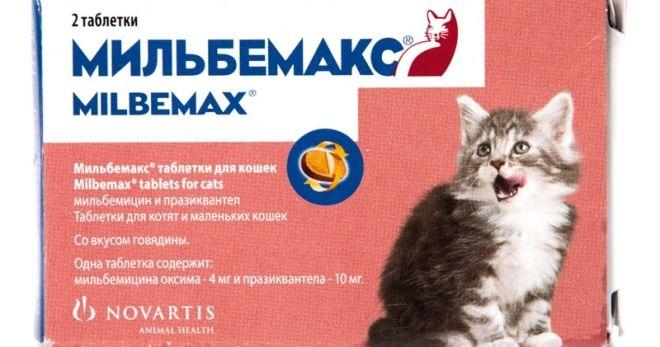 Таблетки от глистов для котят Мильбемакс