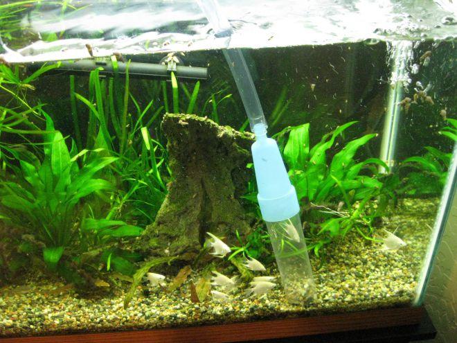 Как промыть песок для аквариума