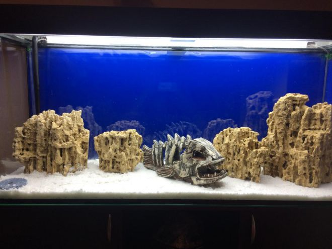 Белый кварцевый песок для аквариума