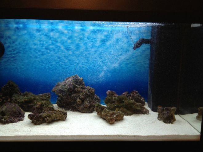 Белый песок в аквариуме