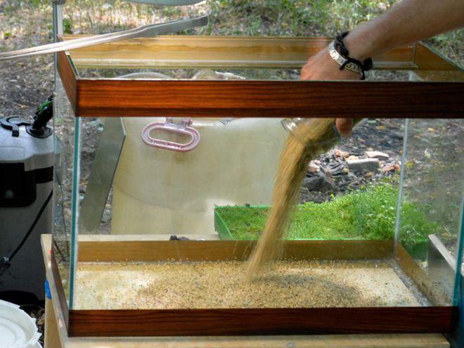 Сколько нужно песка в аквариум