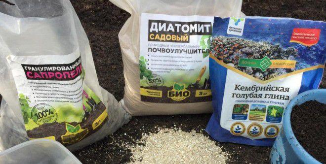 Диатомит садовый свойства и применение