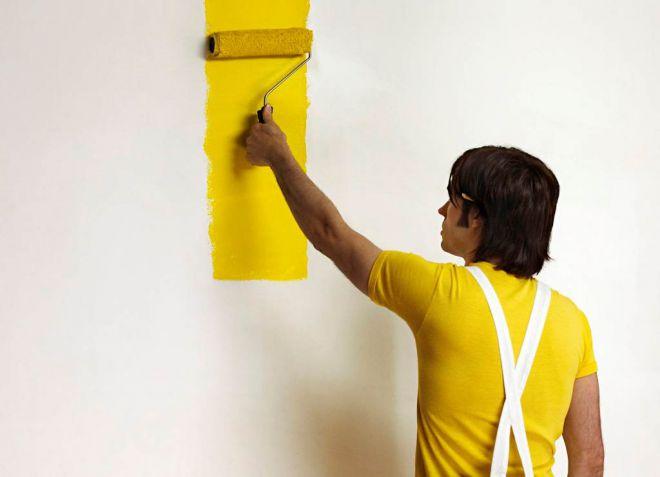 краска против плесени и грибка на стенах