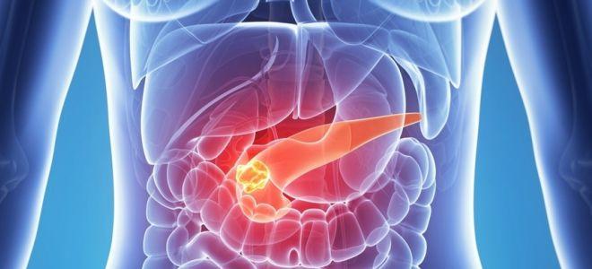 Поджелудочная железа боли в суставах комплекс упражнений при травме плечевого сустава