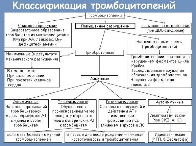 иммунная тромбоцитопения
