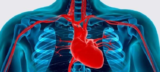 Сердечные заболевания список