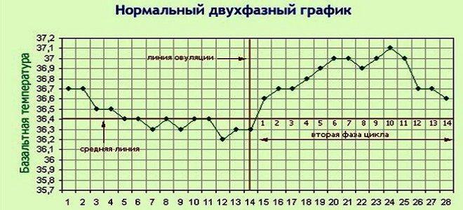 базальная температура норма