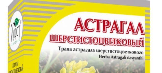 астрагал от аллергии
