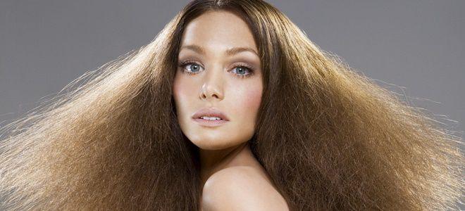 травы для сухих волос