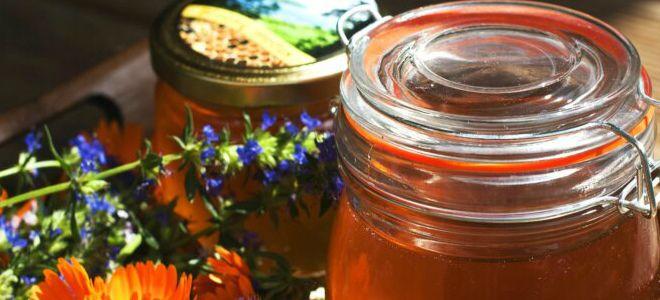 горный мед полезные свойства и противопоказания