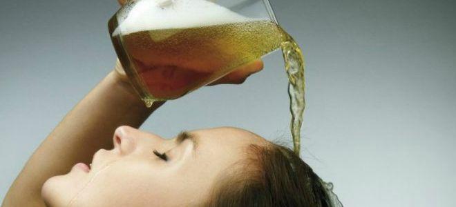 полезно ли пиво для волос