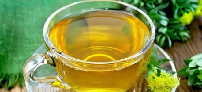 золотарник обыкновенный лечебные свойства и применение