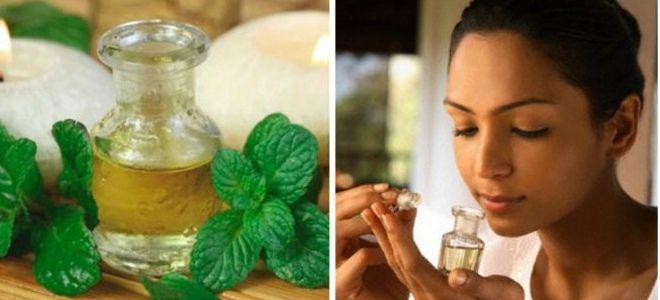масло перечной мяты свойства и применение