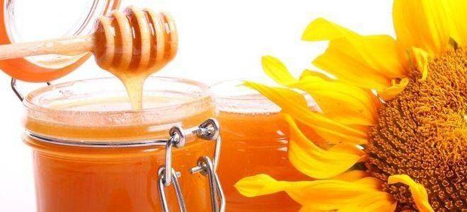 как выглядит подсолнечный мед