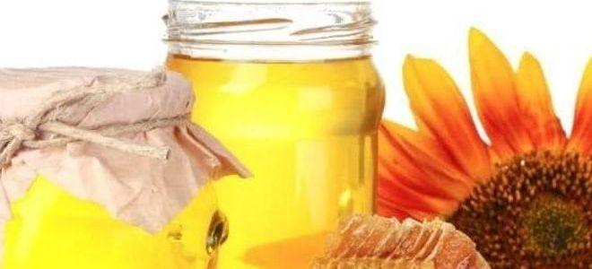подсолнечный мед полезные свойства