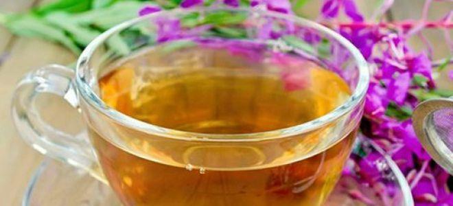 чай из дербенника